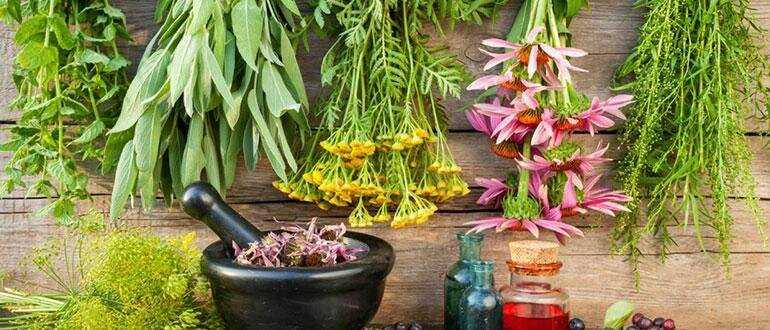 лечение волос с помощью индийских трав