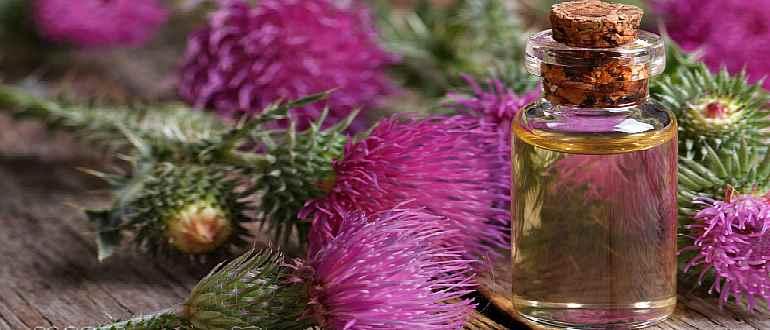 Маска для волос с репейным маслом для сухих волос