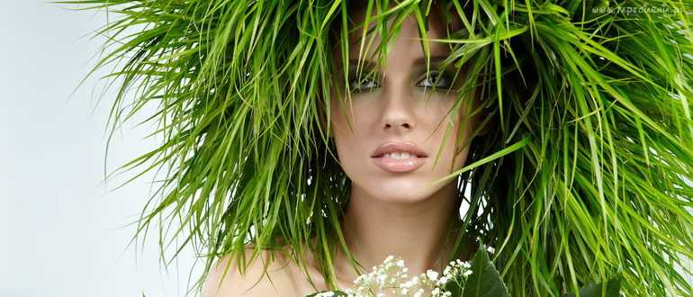 Ускоряем рост волос с помощью различных трав